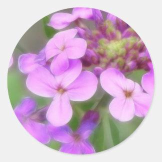 Purple Hesperis matronalis Flowers Classic Round Sticker