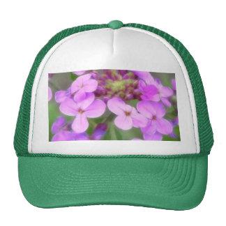 Purple Hesperis matronalis Flowers Trucker Hat