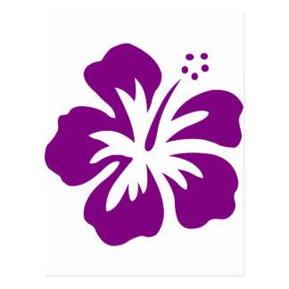 Purple hibiscus aloha flower E Postcard
