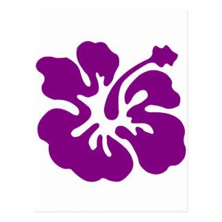 Purple hibiscus aloha flower postcard