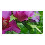 Purple hisbiscus flowers business card