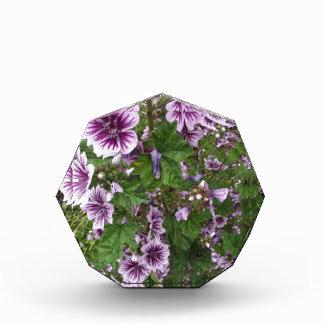 Purple Hollyhocks Acrylic Award