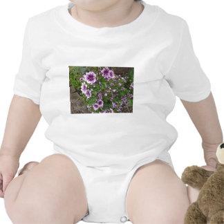 Purple Hollyhocks Baby Creeper