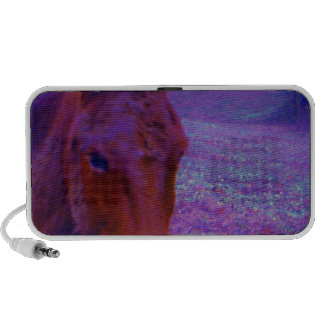 Purple Horse close-up, IN A RAINBOW PURPLE FIELD Travelling Speakers