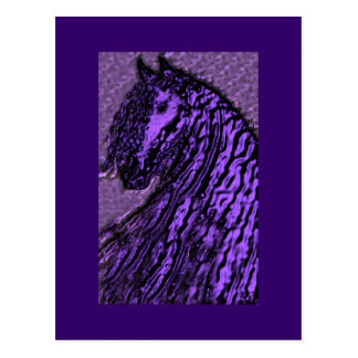 Purple Horse Postcards
