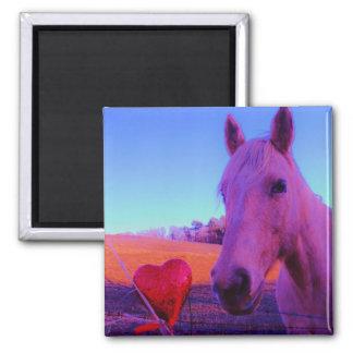 Purple horse Valentine Red Heart Refrigerator Magnets