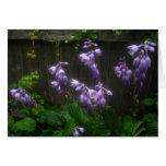 Purple Hosta Florets Greeting Cards