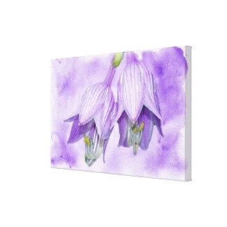 Purple Hosta Flowers Canvas Print
