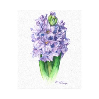 Purple hyacinth canvas print - floral wall art