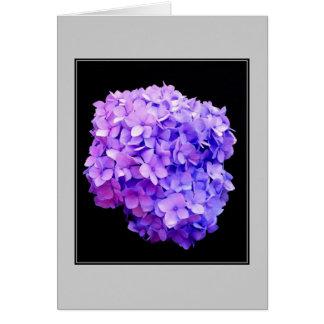 'Purple Hydrangea Bloom' Blank Note Card