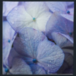 "Purple Hydrangea Blossom Floral Napkin<br><div class=""desc"">These cloth napkins by Janusian Gallery are ideal for the detail-oriented host or hostess who wants their tables to match their invitations. They feature a photograph of a pretty purple hydrangea blossom. They coordinate with the &quot;Heavenly Hydrangeas&quot; wedding / anniversary / shower / party supplies at www.zazzle.com/be_there_invitations. Because we create...</div>"