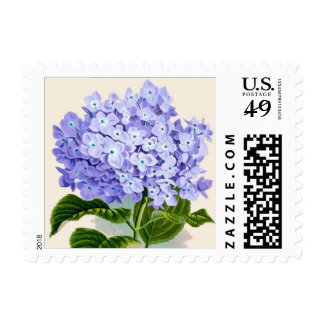Purple Hydrangea Botanical Print - Stamp