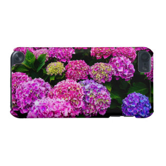 Purple Hydrangea Flowers Blooming In Summer iPod Touch (5th Generation) Case