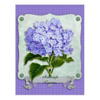 Purple Hydrangea Green Paper Ribbon Square Cutouts Postcard