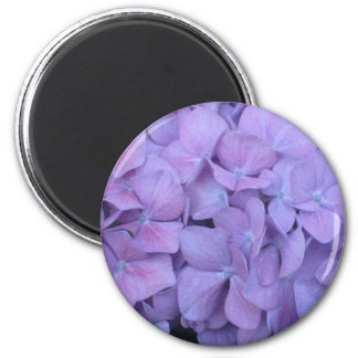 Purple Hydrangea Magnet