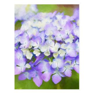 Purple hydrangea | mothersday | birthday | postcard