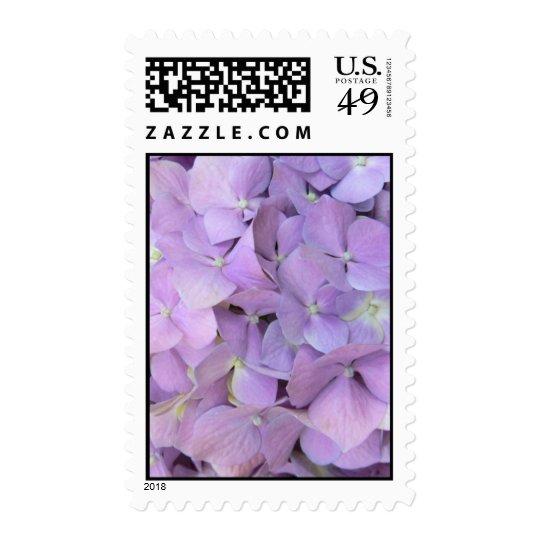 Purple Hydrangea Postage