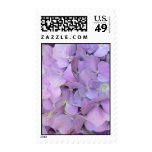 Purple Hydrangea Postage Stamps