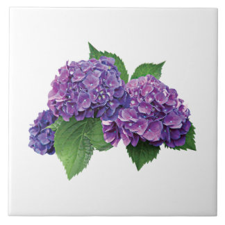 Purple Hydrangea Tiles