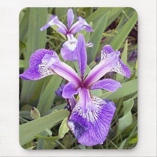 Purple Iris 2 Mousepad