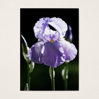 Purple Iris 8393 Mini Print Business Card