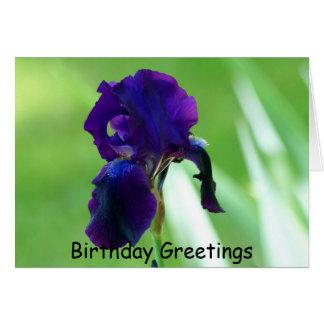 Purple Iris, Birthday Greetings Card