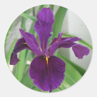 Purple Iris Classic Round Sticker