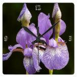 Purple Iris Clock