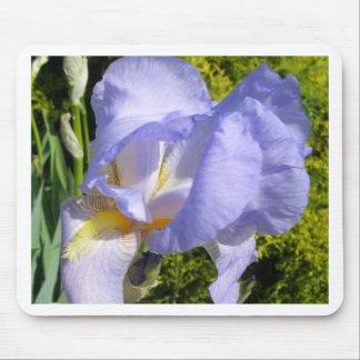 Purple Iris CricketDiane Art & Photography Mouse Pad