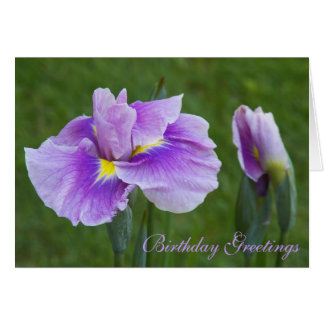 Purple Iris Floral Birthday Card