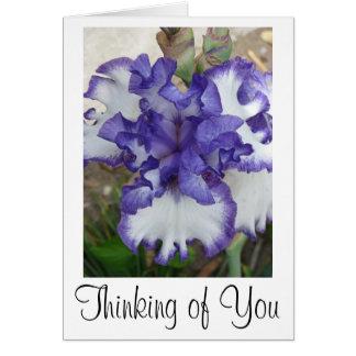 Purple Iris Flower Card, Thinking of You Greeting Card
