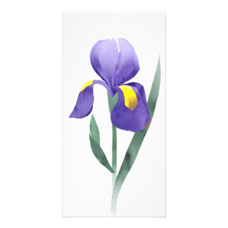 purple iris flower, collage of watercolor doodle picture card