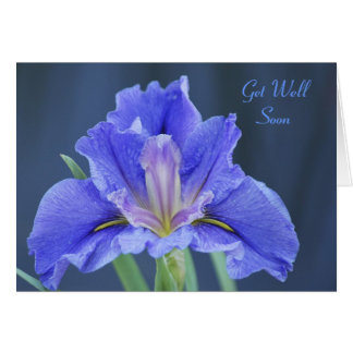 Purple Iris flower get well Card