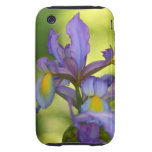 Purple Iris flower iPhone 3 Tough Cover