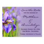 Purple Iris Flower Save the Date Postcards