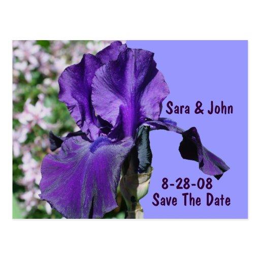 Purple Iris Flower Save The Date Wedding Postcard