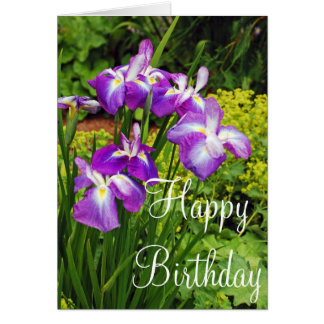 Purple iris flowers birthday greeting card