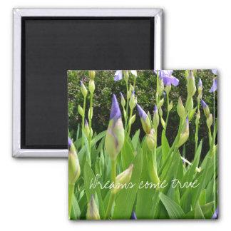 Purple Iris Flowers Dreams Come True 2 Inch Square Magnet