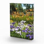 Purple Iris Garden Acrylic Photo Award