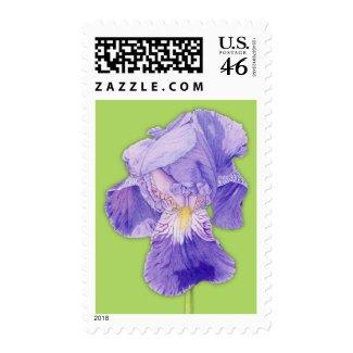 Purple Iris green Stamp stamp