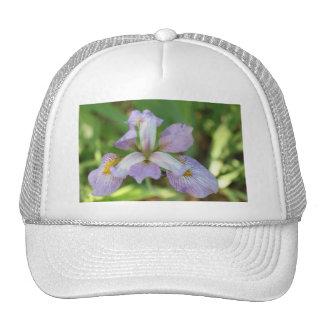 Purple Iris Trucker Hat