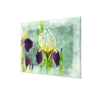 Purple Iris Impressionist Floral Painting Art Canvas Print