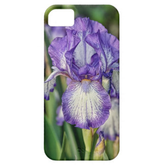 Purple Iris iPhone SE/5/5s Case