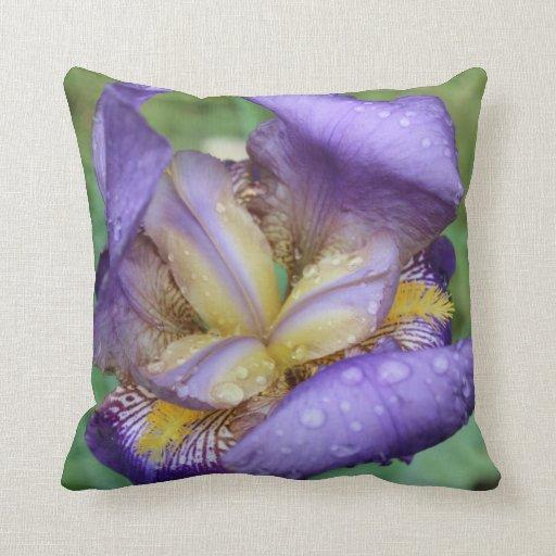 Purple Iris (Iris Germanica) Throw Pillows