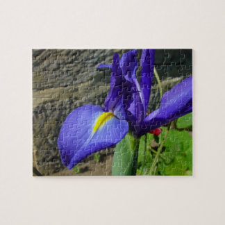 Purple Iris jigsaw puzzle