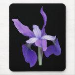 Purple Iris Mouse Pad