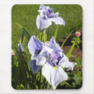 Purple Iris Mousepad