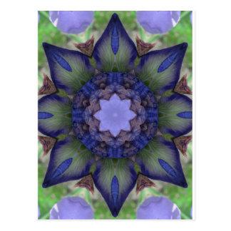 Purple Iris Nature Mandala Postcard