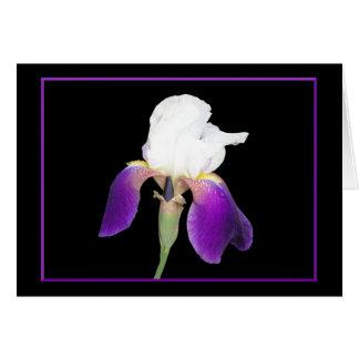 Purple Iris Notecards Card