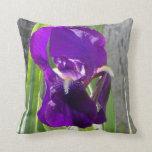 Purple Iris Pillow